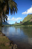 liggande polynesia arkivfoto