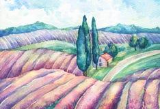 liggande provence Färgrika blommande lavendelfält med det lantliga huset vektor illustrationer