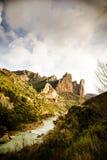 liggande pyrenees Arkivbild