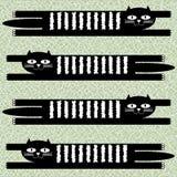 Liggande svart kattbakgrund Royaltyfria Bilder