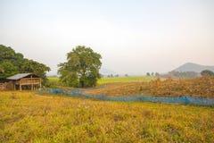 liggande thailand Arkivbilder