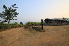 liggande thailand Arkivfoto
