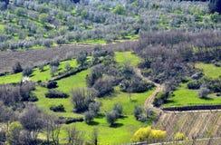 liggande tuscany arkivfoton
