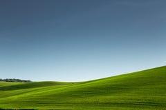 liggande tuscany italy Royaltyfri Fotografi