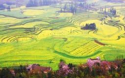 liggande yunnan Arkivfoto