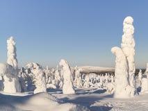 liggandelapland vinter Royaltyfri Fotografi