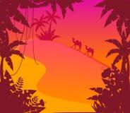 ligganden planterar tropiskt Arkivbild