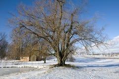 liggandeohio vinter Royaltyfri Fotografi