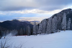 ligganderomania vinter Royaltyfri Fotografi