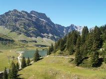 liggandeschweizare Royaltyfri Bild