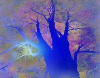 liggandetree Arkivfoton