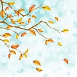 Ligh blue autumn background with transparencies Stock Images