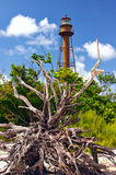 lighhousesanibel Arkivbilder