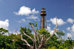 lighhousesanibel Royaltyfri Bild
