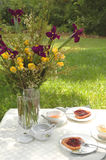 Light Afternoon Tea. Break out the fine china--afternoon tea al fresco stock images