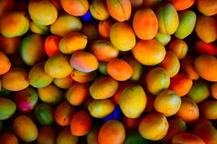 The light apricots background Royalty Free Stock Photo