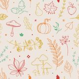 Light autumn pattern. Autumn pattern with pumpkin, leaves, berries, mushroom, apple, pear acorns Vector seamless natural pattern Stock Photo
