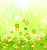 Light background with clovers and coins for St. Patricks Day Royalty Free Stock Photo