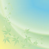 Light background with green leaves Royalty Free Stock Photo