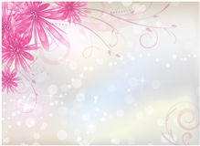 Light background with pink aster flowers Stock Photo