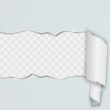 Light background with a torn strip of paper. Royalty Free Stock Images