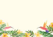 Background with tropical flowers, palm leaves and hummingbirds vector illustration