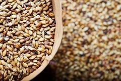 Light barley malt grains for beer production. Detaii stock photo