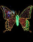 Light based butterfly royalty free stock images