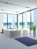 Light bathroom interior with jacuzzi. A 3d rendering of light bathroom interior with jacuzzi Royalty Free Stock Images