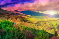Light beam falls on hillside with autumn forest in mountain royalty free stock photography