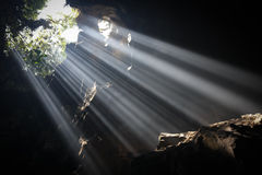 Light Beams in Cave. Multiple light beams are illuminating the bottom of a cave near Hanoi, North Vietnam stock images