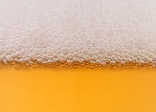 Light beer background. Stock Images