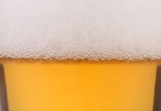 Light beer background. Royalty Free Stock Images