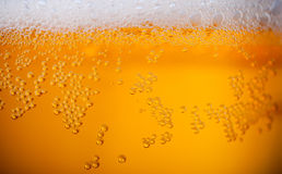 Light beer background Stock Photos