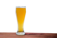 Light beer on the bar on a white background Stock Image