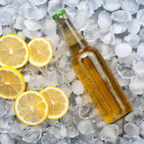 Light beer bottle with lemon slices. In the ice close up. top view Royalty Free Stock Images