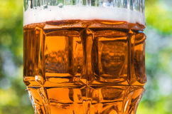 Light beer closeup in large glass, alcohol Royalty Free Stock Images