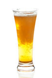 Light beer with the foam in a tall glass Royalty Free Stock Image