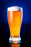 light beer in frosty glass over dark blue background Stock Images