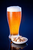 light beer in frosty glass with pistachios over dark blue backgr Royalty Free Stock Photos