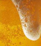 Light beer with a froth texture Stock Photography
