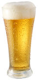 Light beer in glass. On a white background Royalty Free Stock Photo