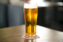 Light beer. Glass of light beer on a dark pub royalty free stock images