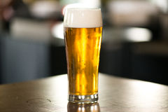 Light beer. Glass of light beer on a dark pub royalty free stock photography