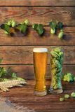 Light beer glass lager, pilsner, ale on wooden table in bar or pub, wooden background. Light beer glass lager malt beer on wooden table with green hops in bar or Stock Photography