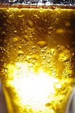 Glass, beer, isolated, drop, alcohol, pint, water, foam, frosty,. Light Beer in a glass with water drops. Golden beer. Macro drops on the glass royalty free stock image