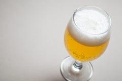 Light beer on gray Stock Image