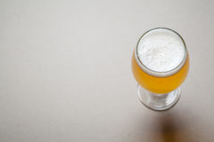 Light beer on gray Stock Photography