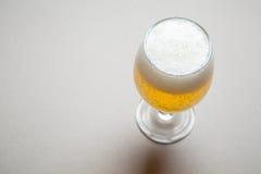 Light beer on gray Stock Photo