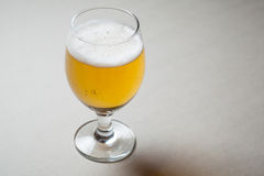 Light beer on gray Stock Images